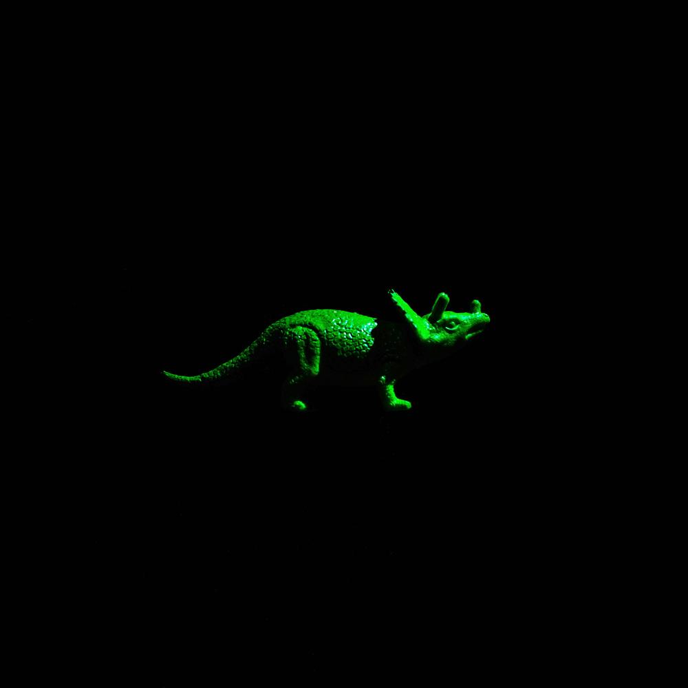 Dinosaur-9.jpg