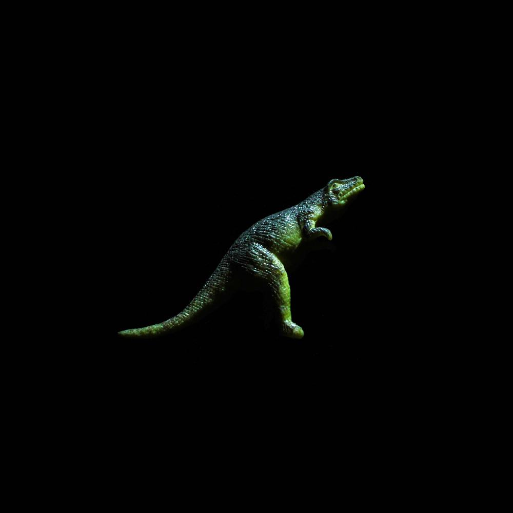 Dinosaur-10.jpg