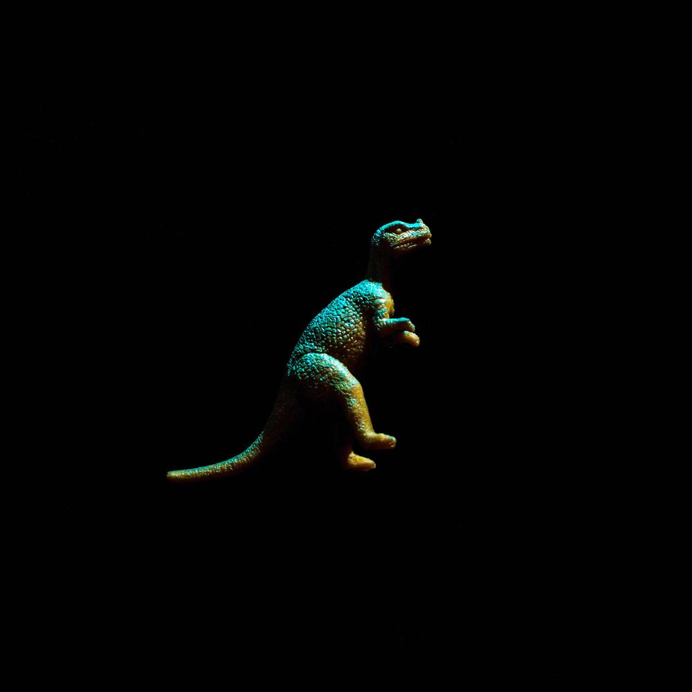 Dinosaur-11.jpg