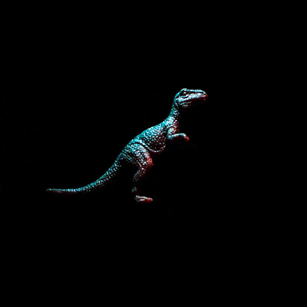 Dinosaur-13.jpg