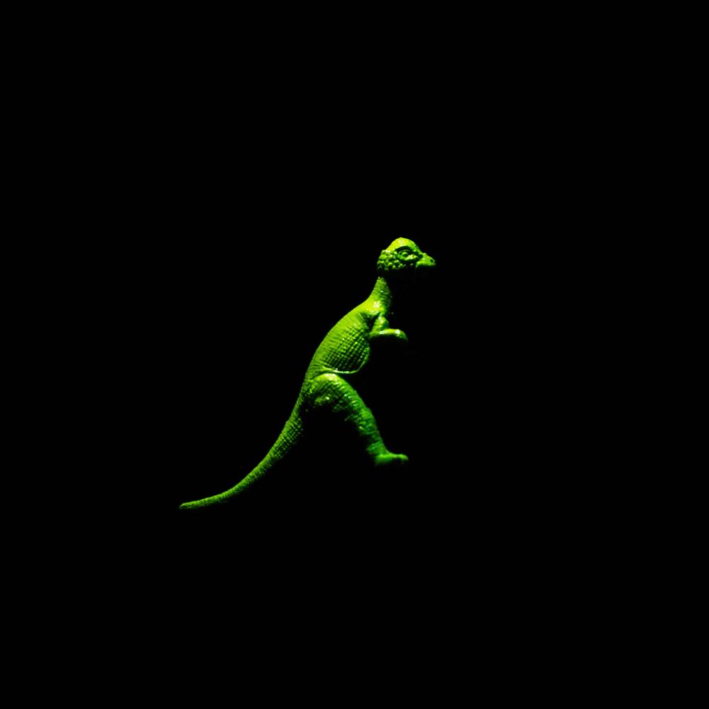 Dinosaur-15.jpg