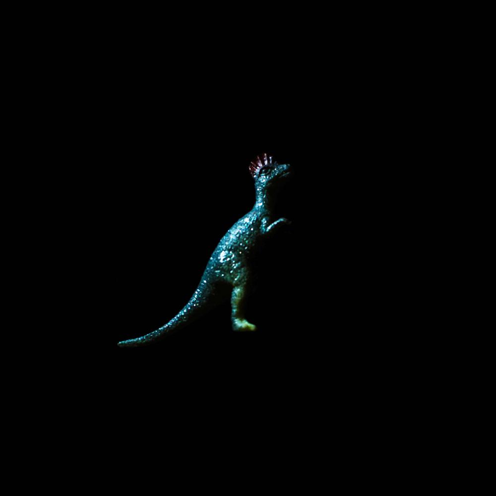 Dinosaur-17.jpg