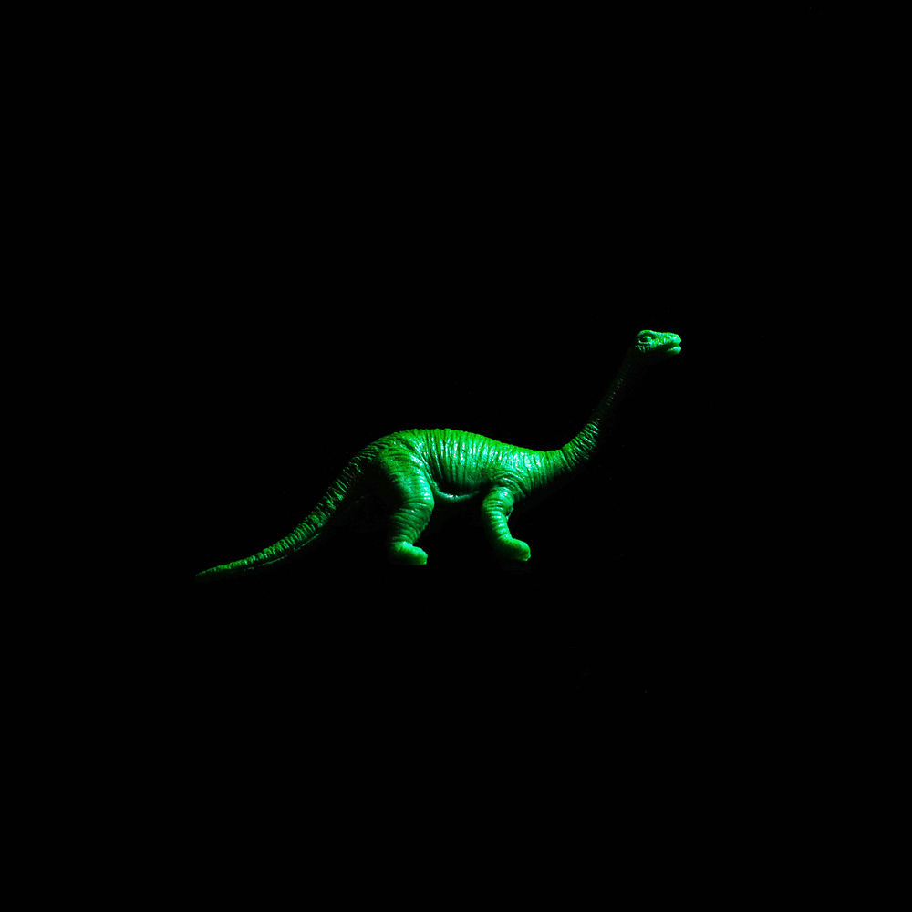 Dinosaur-20.jpg