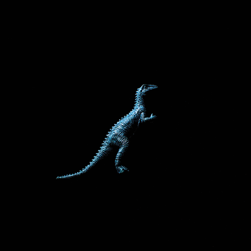 Dinosaur-19.jpg