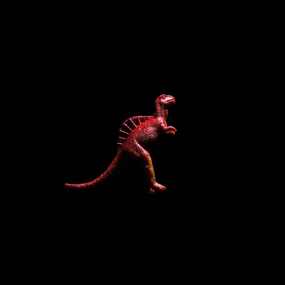 Dinosaur-21.jpg