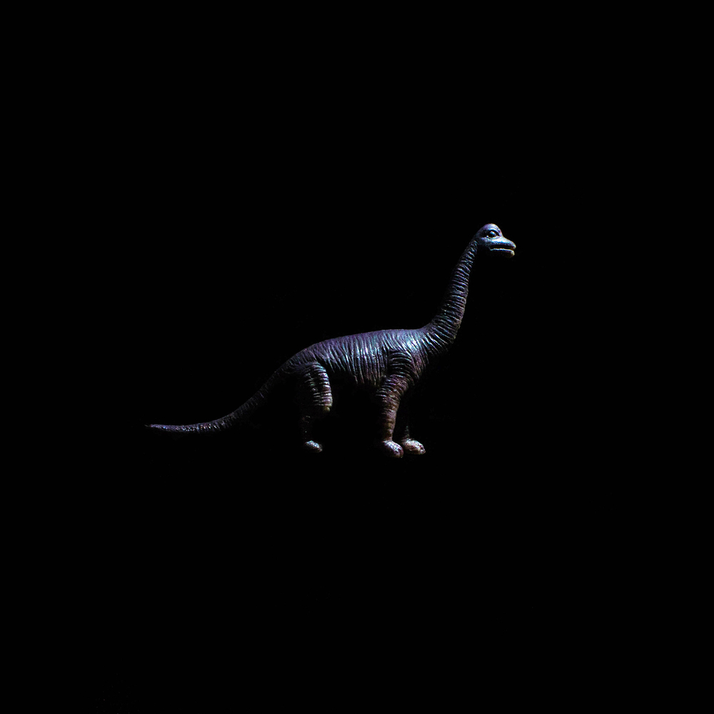 Dinosaur-22.jpg