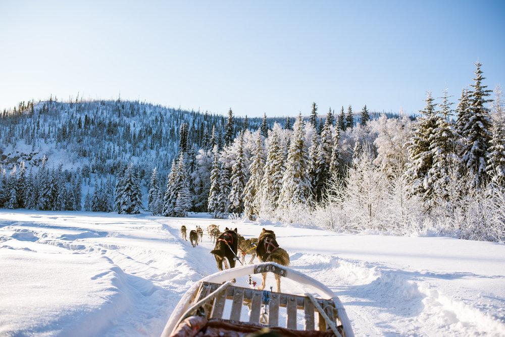 AlaskaAdventure-4.jpg