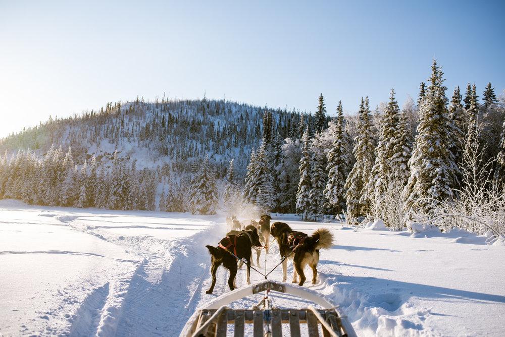AlaskaAdventure-5.jpg