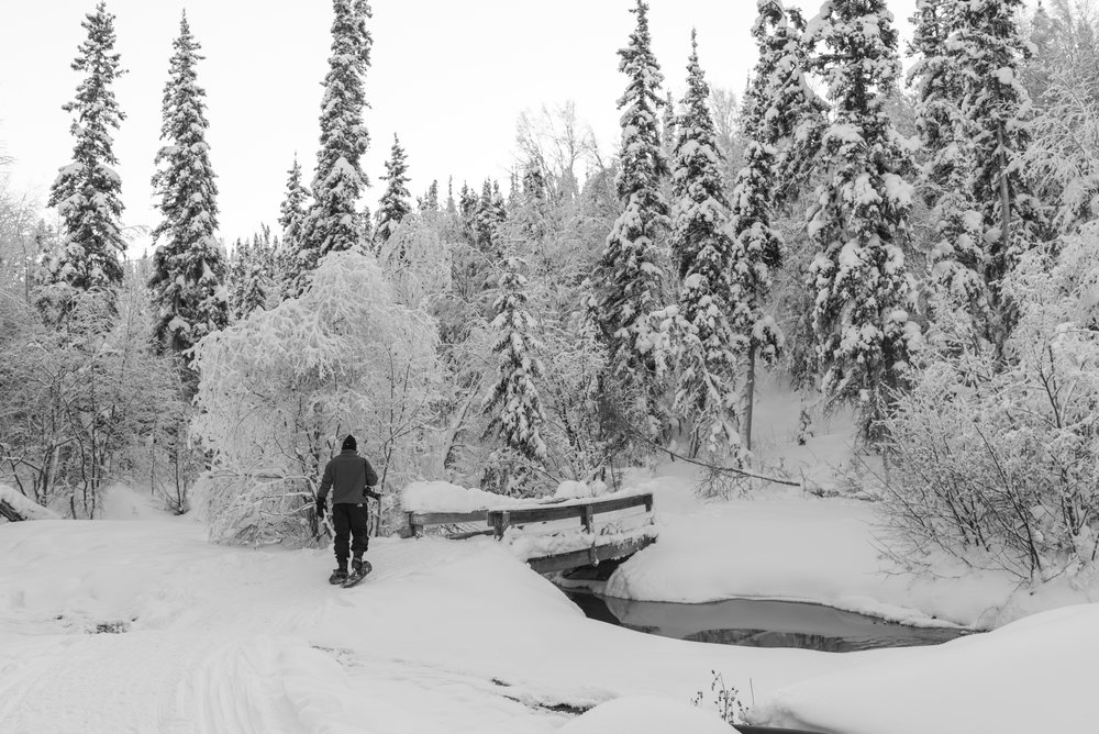 snowshoe-3.jpg