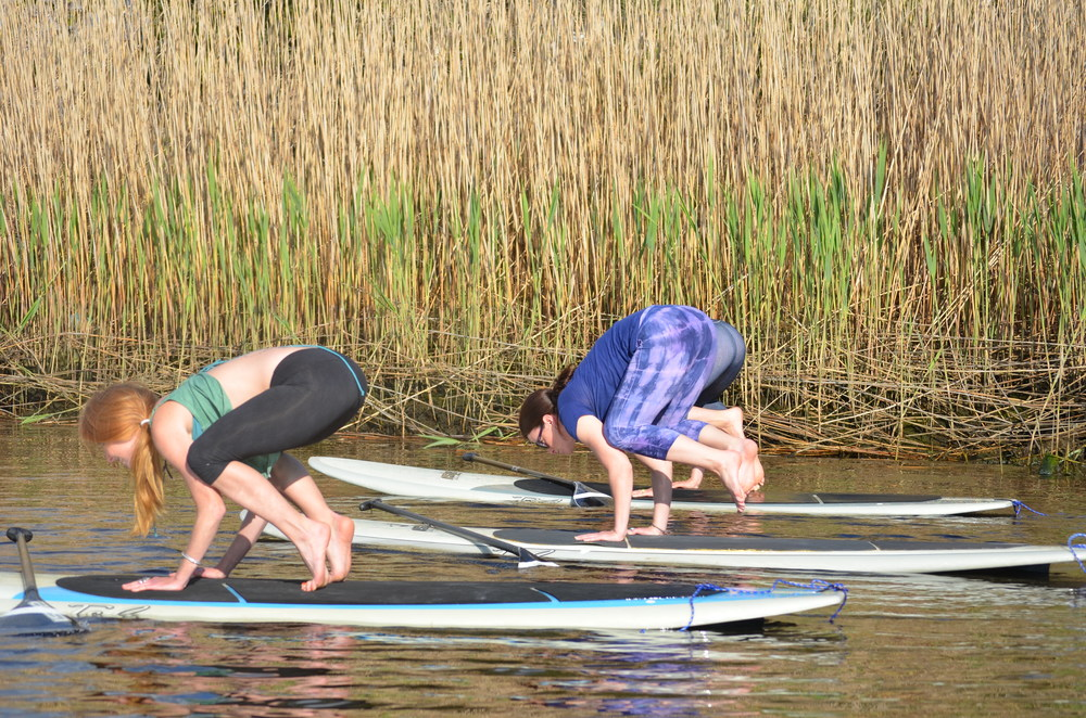 Copy of paddle yoga, sup yoga westerly, paddle yoga watch hill, paddle yoga ri, sup charlestown