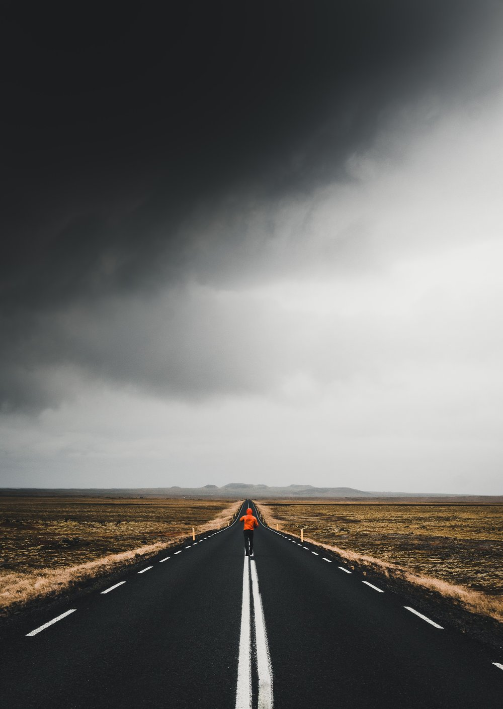 Photo by  Luke Stackpoole  on  Unsplash