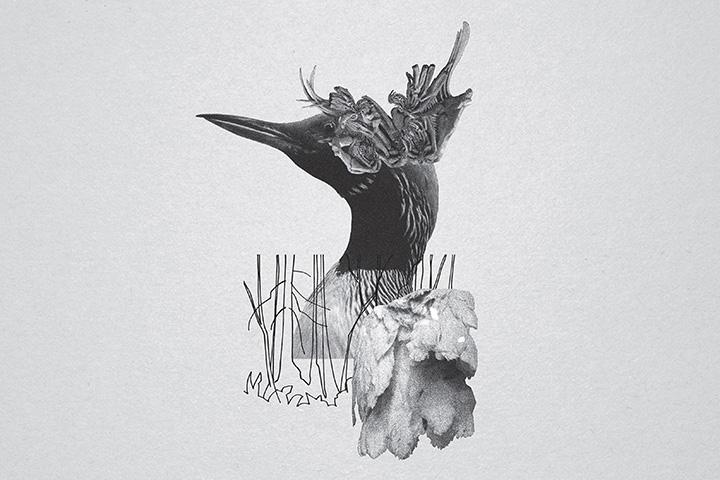 mujuice-metamorphosis-2014-3