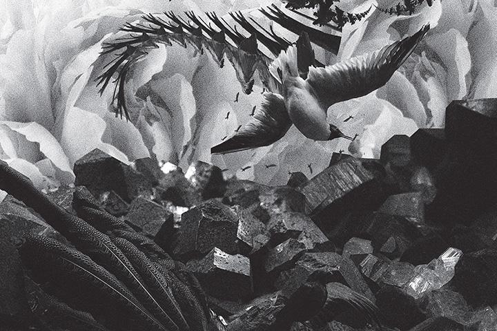 mujuice-metamorphosis-2014-4