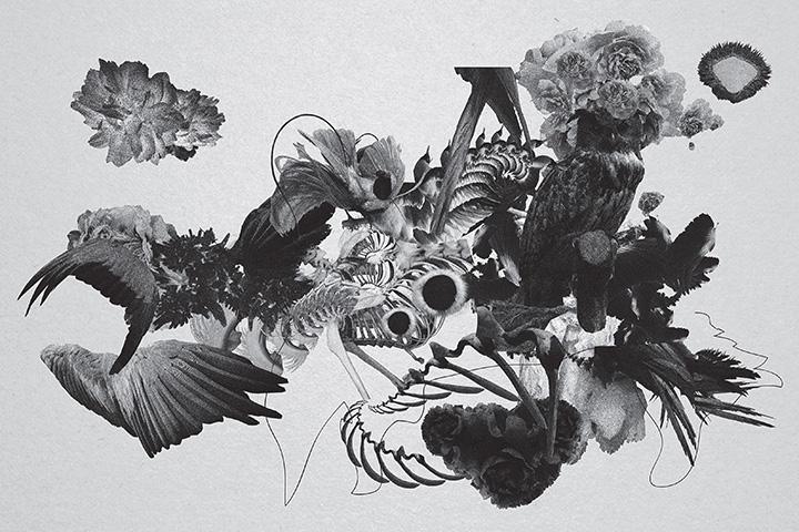 mujuice-metamorphosis-2014-9