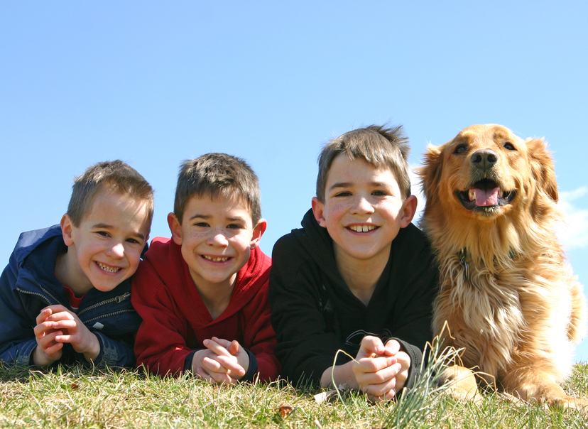 Boys Laying in Grass With Dog
