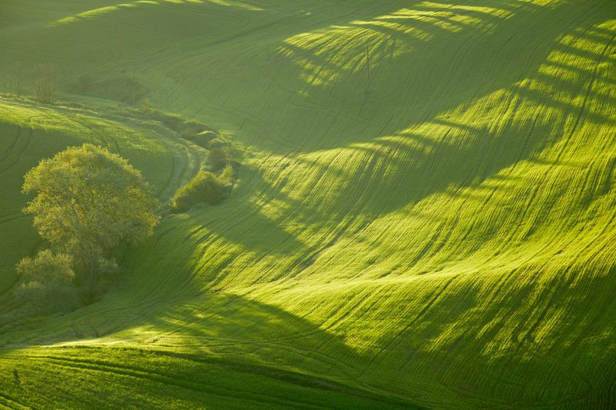 Spring Tuscany