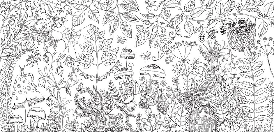johanna-basford-coloring-books-for-adults-07