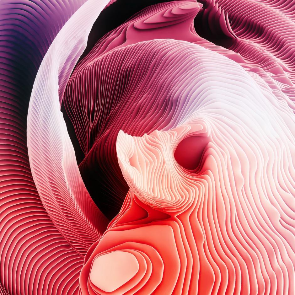 Ari-Weinkle-spiral4