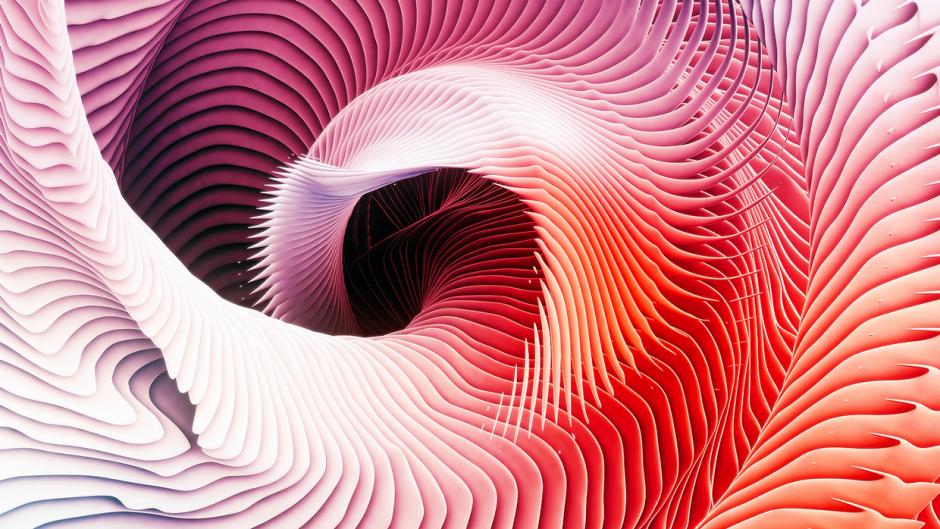 Ari-Weinkle-spiral5