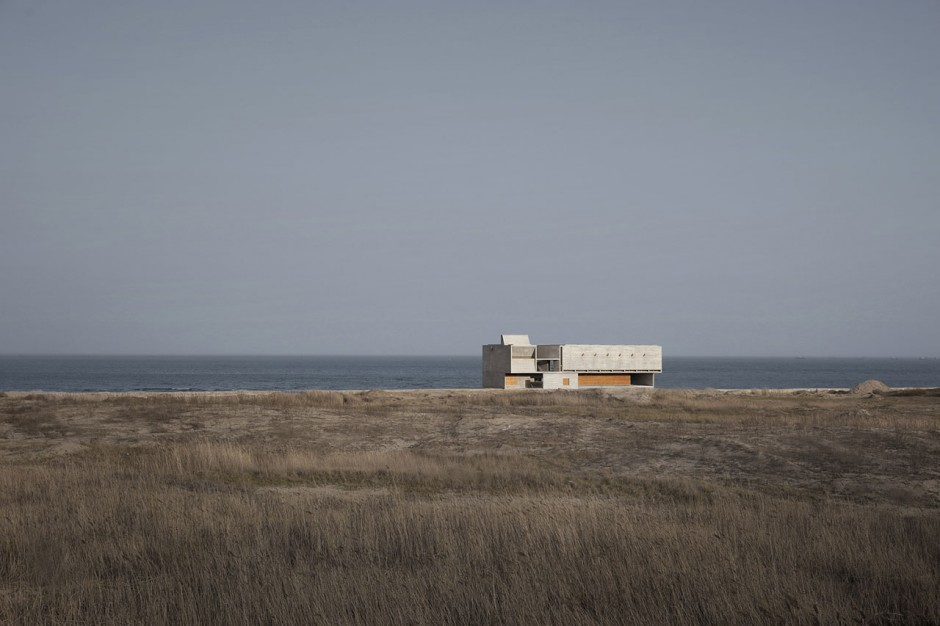 seashore-library-vector-architects1