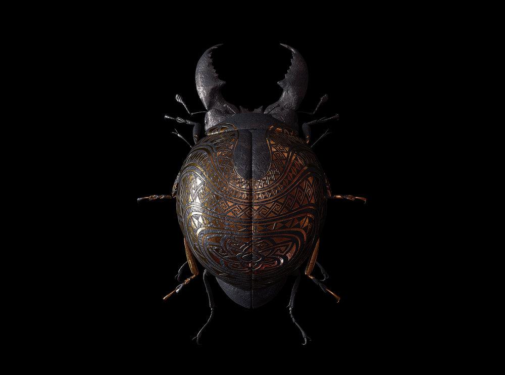 engraved-entomology8.jpg