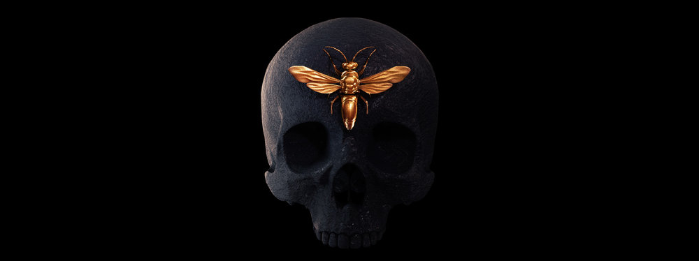engraved-entomology3.jpg