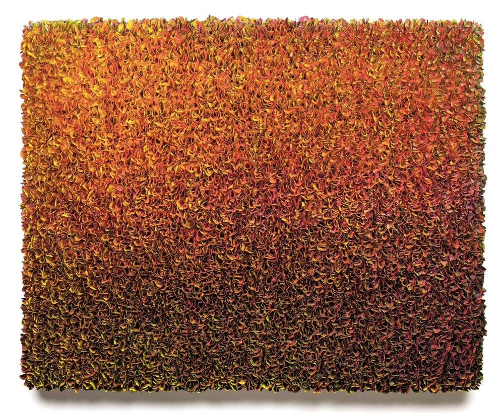 Untitled Sun Blaze, 2015