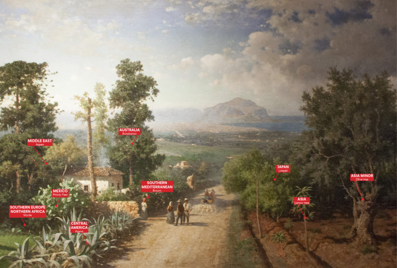 Veduta-di-Palermo-Francesco-Lojacono-1875-Manifesta-12-Palermo-Atlas-2017-Courtesy-OMA-1-790x533.jpg