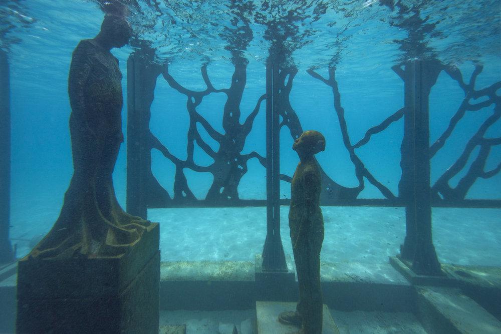 coralarium5.jpg