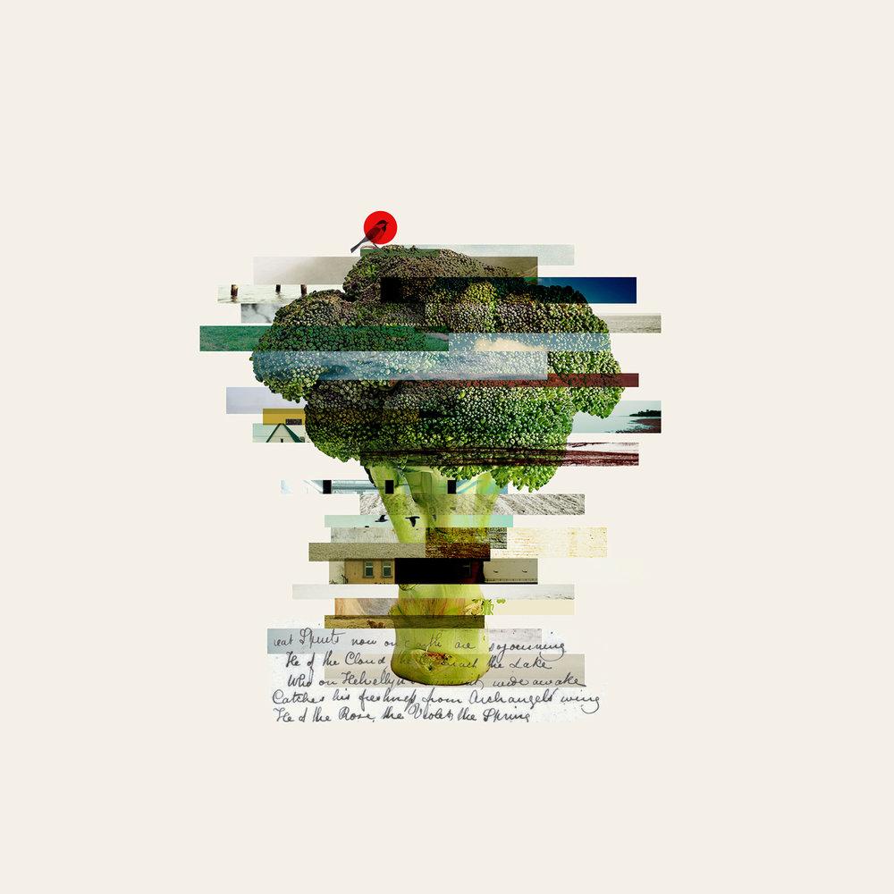 Broccoli 30x30.jpg