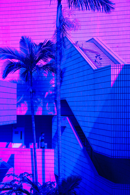 busygina-neon3.jpg