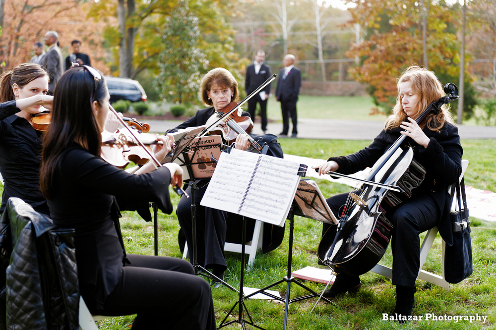 Pure Elegance Events - Portfolio Page - Kushin & Roye Wedding (6).jpg