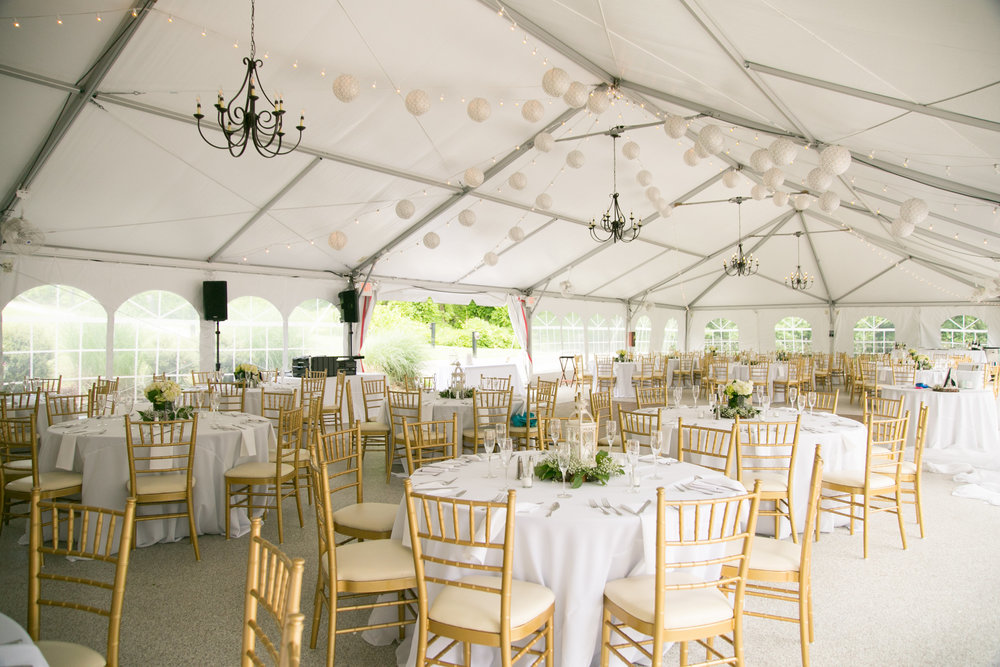 Pure elegance events Tynise Kee dc wedding planner va wedding planner rust manor house leesburg -0037.jpg