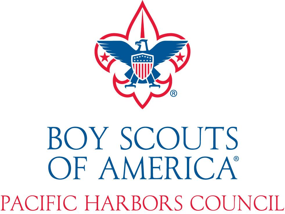 boy scouts in america