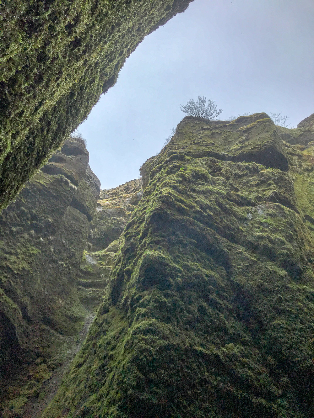 Looking upward from the secret cave