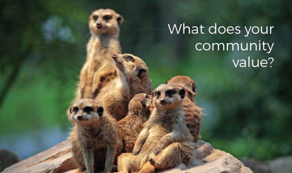 Community large.jpg