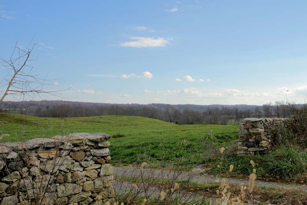 The countryside looking east towards Haymarket, VA. Photo by Sam Sheline.