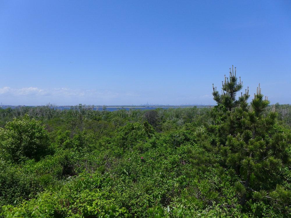 View From Ft. Tilden Gunmounts