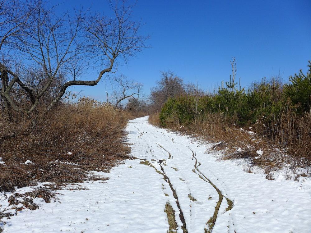 Winter Riding in Floyd Bennett Field