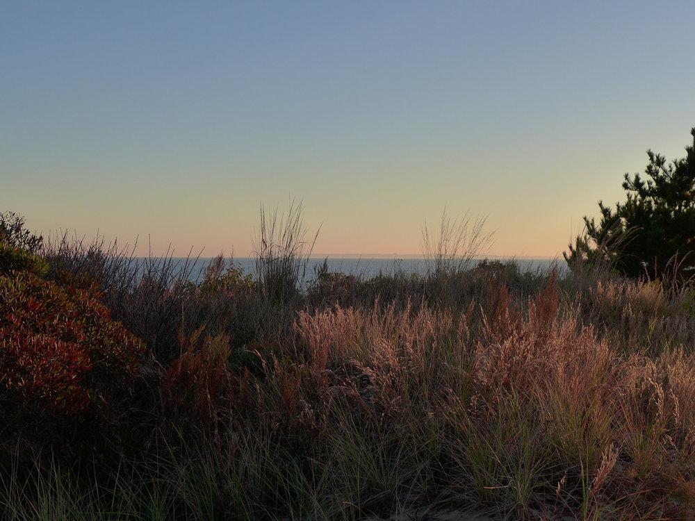 Atlantic Ocean from Ft. Tilden Dunes