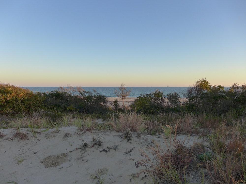Ft. Tilden Dunes