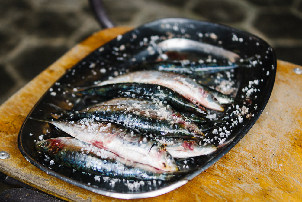 Sardines, sardines, ready for grilling