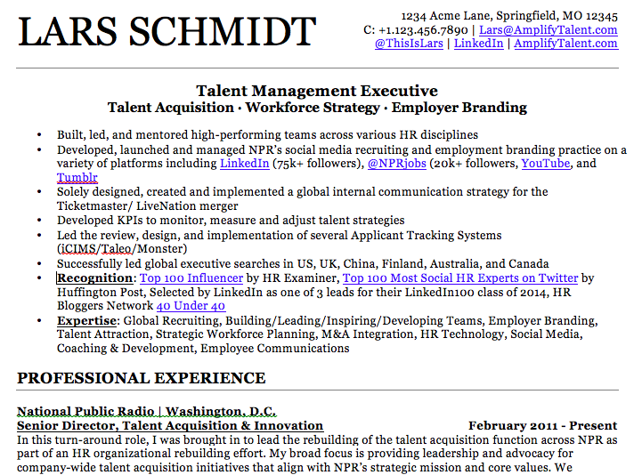 Lars-Schmidt-Resume-Grab