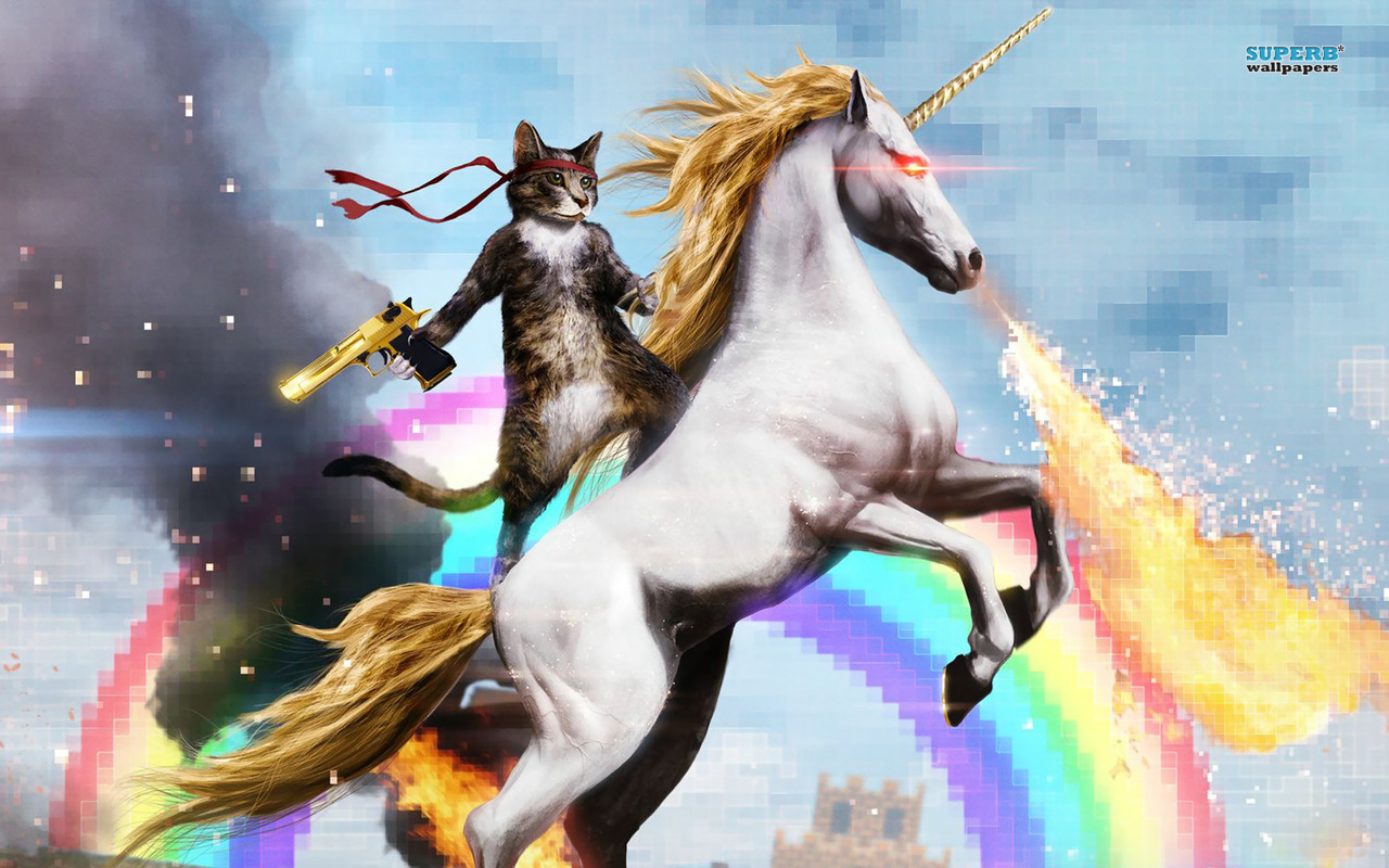cat-riding-a-fire-breathing-unicorn-16414-1280x800