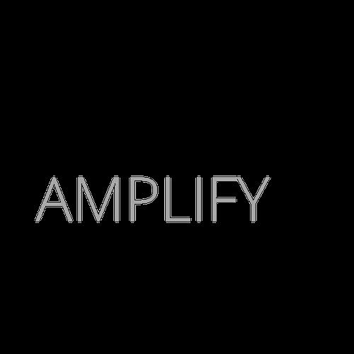 Amplify Logo_Black Slash.png