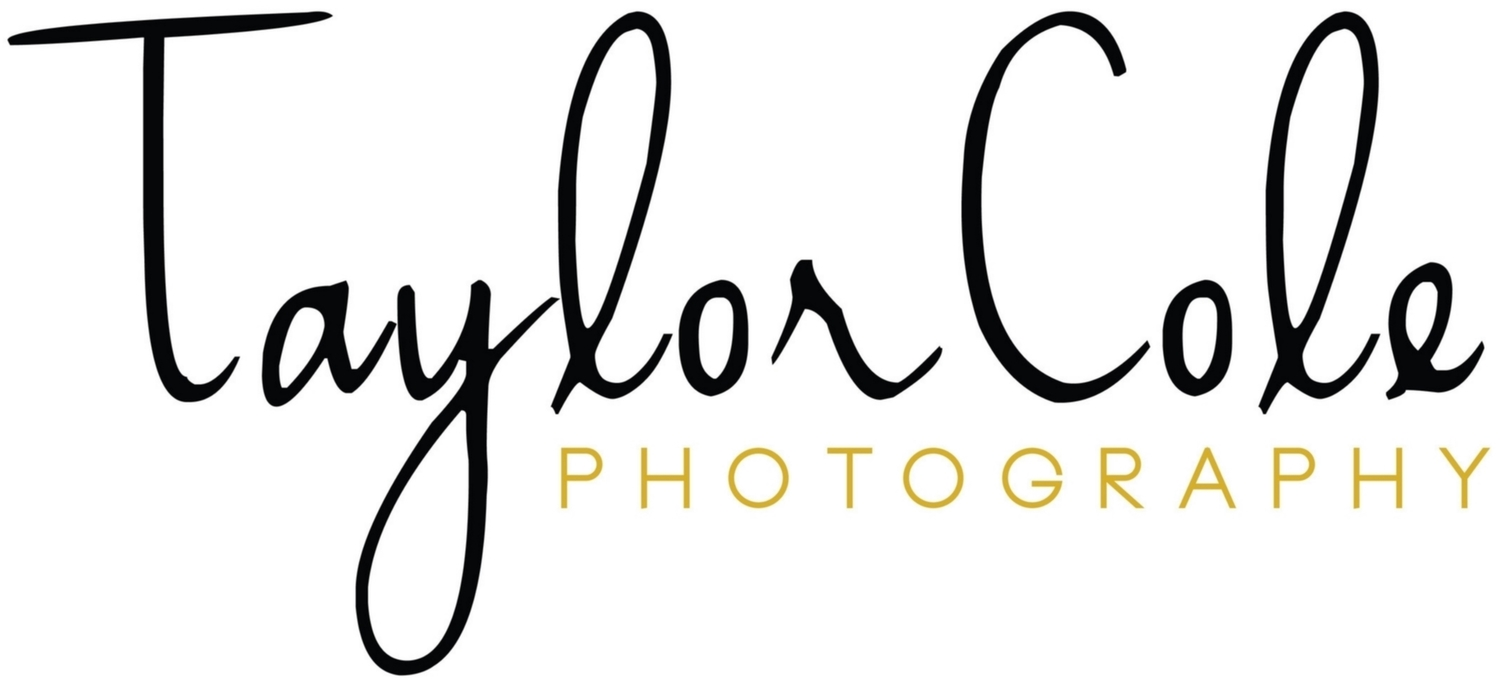 Destination Wedding Photographer | Taylor Cole Photography
