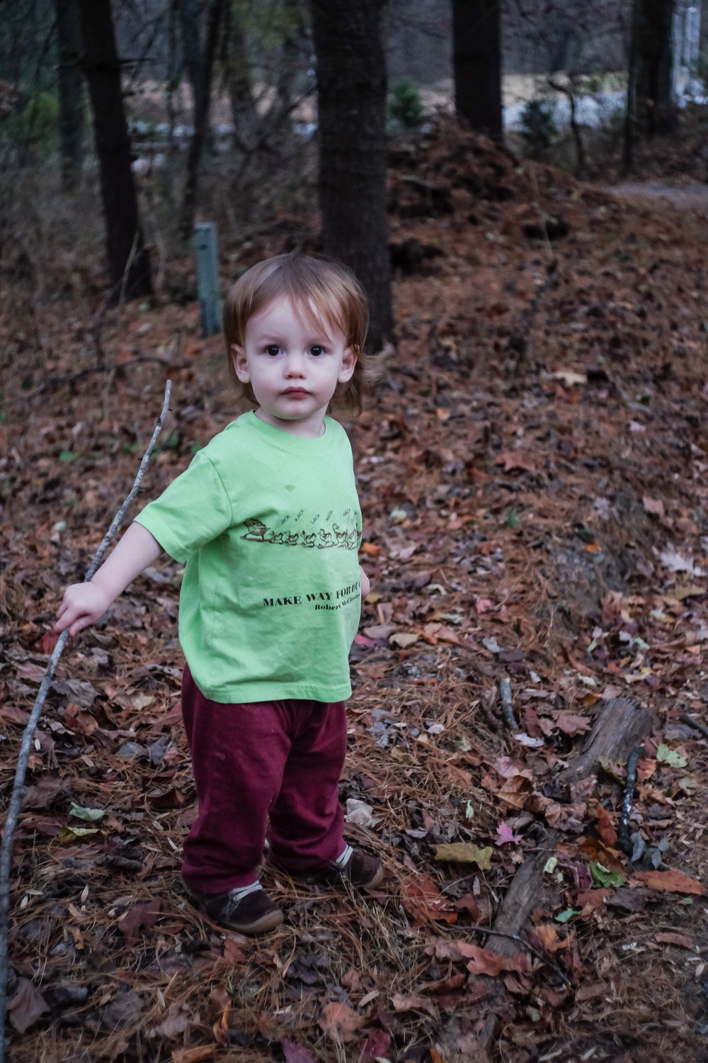 At 17 months, Abe finds sticks, leaves, and Virginia red clay a lot more desirable than floor dirt!