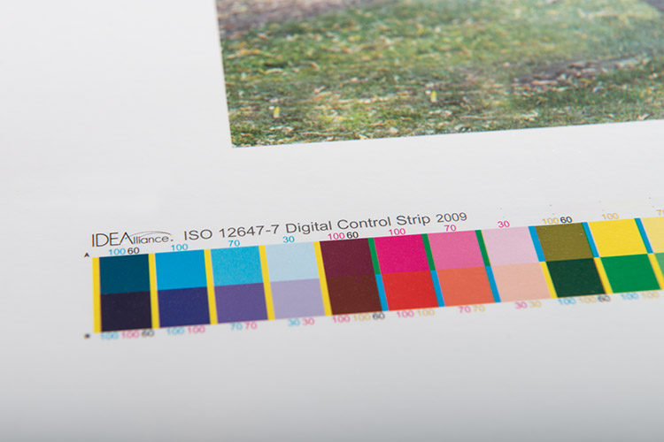 GraCol Color Bars