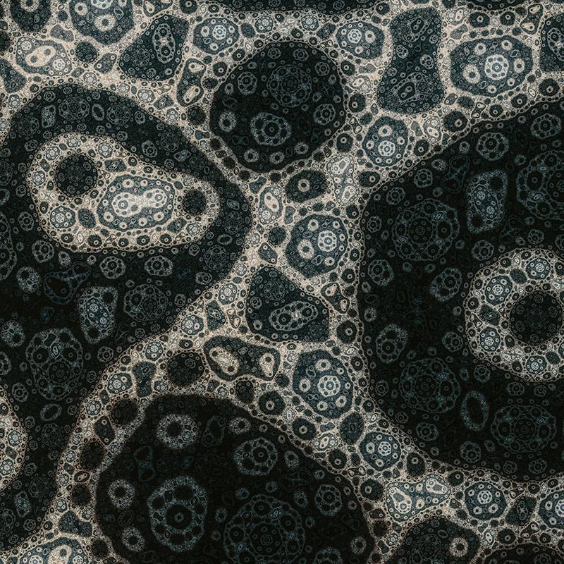 20140228-nova22.jpg