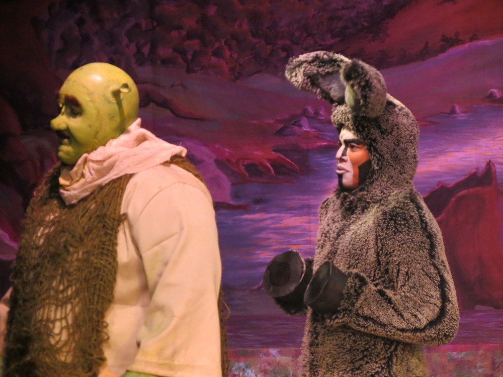 Christian as Donkey in  Shrek, the Musical.  Savannah Children's Theater. June 2014.